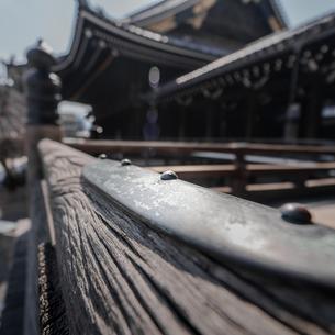 Bukkoji Buddhist Temple;Kyotoの写真素材 [FYI02708806]