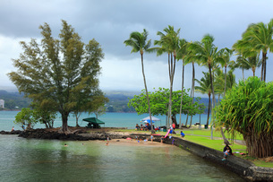 ハワイ島ヒロのココナッツアイランドの写真素材 [FYI02708828]