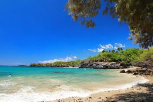 ハワイ島 ワイアレアビーチの写真素材 [FYI02708830]
