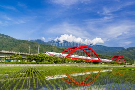 Taiwan,Hualien County,Yuli Town,Kecheng Bridge,Rice,Rice Field,Agriculture,Huadong Rift Valleyの写真素材 [FYI02708834]