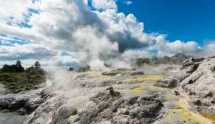 Steaming Pohutu Geyser and Prince of Wales Feathers Geyserの写真素材 [FYI02708960]