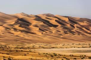Sand dunes in desert near Al Hamanm, Rub' al Khali orの写真素材 [FYI02708962]