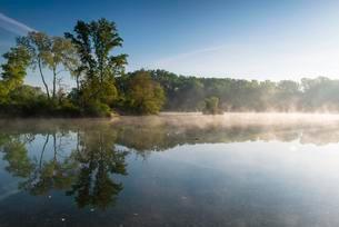 Dechantlacke with early morning fog, Lobau, Danube-Auenの写真素材 [FYI02708981]