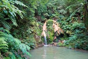 Waterfall, hot spring, Caldeira Velha, S?o Miguel, Azoresの写真素材 [FYI02708982]