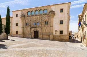 University, Palacio de los Marqueses de Jabalquinto, Plazaの写真素材 [FYI02709011]