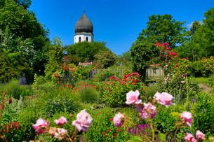Monastery garden, Fraueninsel, Chiemsee, Upper Bavariaの写真素材 [FYI02709013]