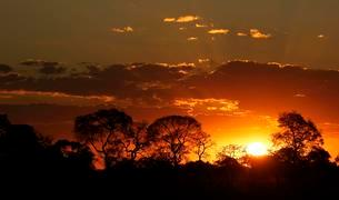 Sunset in the Pantanal, Mato Grosso do Sul, Brazil, Southの写真素材 [FYI02709020]