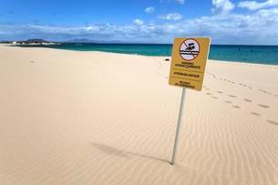 Warning sign, undertows, sandy beach, Playa Bajo Negroの写真素材 [FYI02709030]