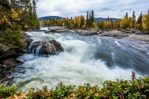Rapids of Gamajahka, rivers, Kvikkjokk, Laponiaの写真素材 [FYI02709177]