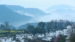 spring,Wuyuan, Chinaの写真素材 [FYI02709256]