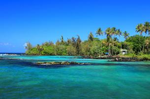 ハワイ島ヒロのカールスミスビーチパークの写真素材 [FYI02709528]