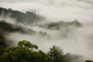 The sea of cloud in Dahu; Maioli; Taiwanの写真素材 [FYI02709554]