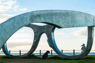 Woman taking picture of dog sitting by giant sculpture of a pair of spectacles on a lawn, promenadeの写真素材 [FYI02709733]