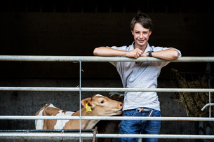 Young man standing in a barn with a Guernsey calf, smiling at camera.の写真素材 [FYI02709956]