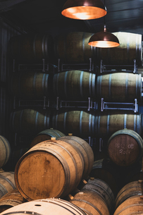 Oak wine barrels in a winery.の写真素材 [FYI02710000]