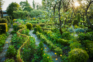 View of garden with stone path, flower beds, shrubs and trees in the background.の写真素材 [FYI02710021]