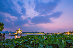 Mid-Lake Pavilion and lotus against the fantasy skyの写真素材 [FYI02710564]