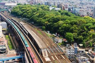 東京を走る秋田新幹線E6系こまちと東北新幹線E5系はやぶさの写真素材 [FYI02717795]