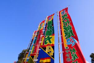 両国国技館前の相撲旗の写真素材 [FYI02718084]