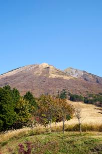 桝水原より望む大山の写真素材 [FYI02718103]