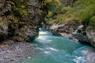 黒部峡谷猿飛峡の写真素材 [FYI02718227]