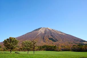 桝水高原より望む大山の写真素材 [FYI02719388]