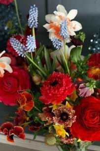 春の花のアレンジメントの写真素材 [FYI02720585]