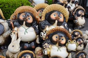 信楽陶器市の信楽焼たぬきの写真素材 [FYI02721685]