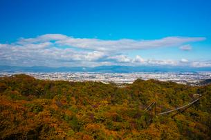 ほしだ園地紅葉と吊橋の写真素材 [FYI02722227]