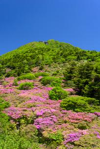 初夏の仁田峠の写真素材 [FYI02722282]