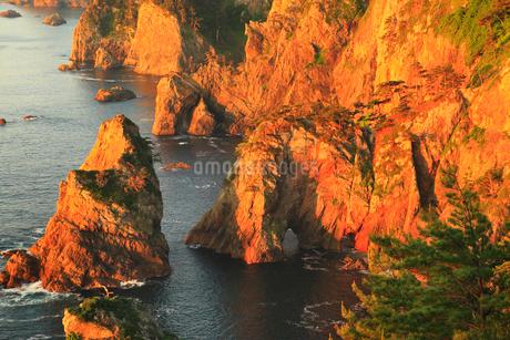 朝日に染まる北山崎断崖の写真素材 [FYI02722631]