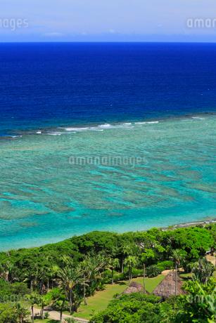 奄美大島 大浜海浜公園より望む東シナ海の写真素材 [FYI02722656]