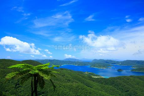 奄美大島 油井岳展望台より望む大島海峡と加計呂麻島の写真素材 [FYI02722722]