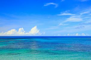 奄美大島 土盛ビーチの写真素材 [FYI02722911]
