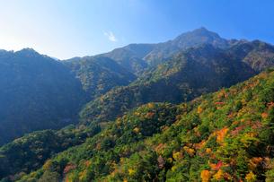 三重県 御在所岳の紅葉の写真素材 [FYI02723240]