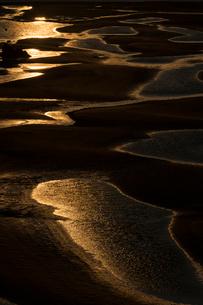 干潮の新舞子干潟の写真素材 [FYI02723469]