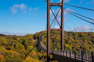 ほしだ園地紅葉と吊橋の写真素材 [FYI02723500]
