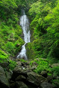 奄美大島 フナンギョの滝の写真素材 [FYI02723655]