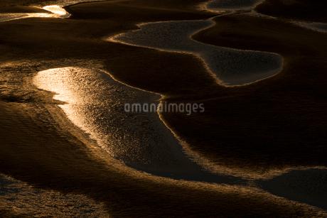 干潮の新舞子干潟の写真素材 [FYI02723718]