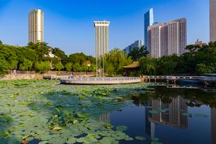 大連,労働公園と高層ビル群の写真素材 [FYI02723740]