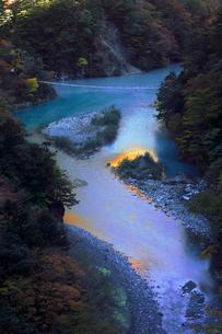 11月 夢の吊橋 紅葉の寸又峡の写真素材 [FYI02723857]