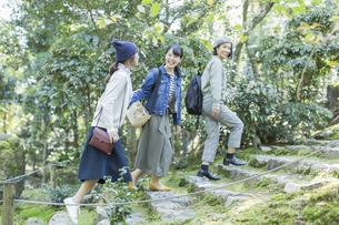 参道を歩く3人の女性の写真素材 [FYI02724913]