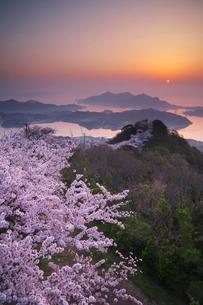積善山の桜と日の出の写真素材 [FYI02725059]
