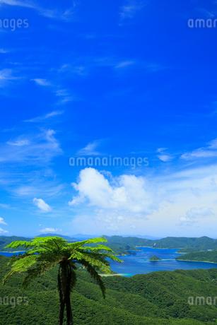 奄美大島 油井岳展望台より望む大島海峡と加計呂麻島の写真素材 [FYI02725456]