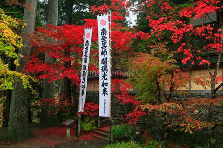 両界山横蔵寺の紅葉の写真素材 [FYI02725496]