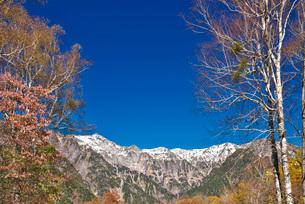 笠ヶ岳と抜戸岳と紅葉の写真素材 [FYI02725585]