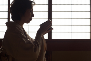 茶道を嗜む50代女性の写真素材 [FYI02726126]