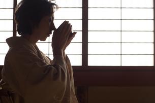 茶道を嗜む50代女性の写真素材 [FYI02727287]