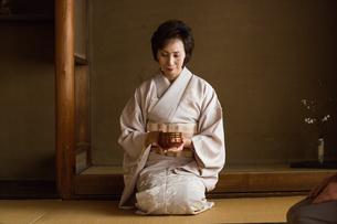 茶道を嗜む人達の写真素材 [FYI02728644]