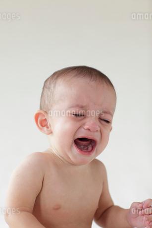 泣いている外国人の赤ちゃんの写真素材 [FYI02730559]